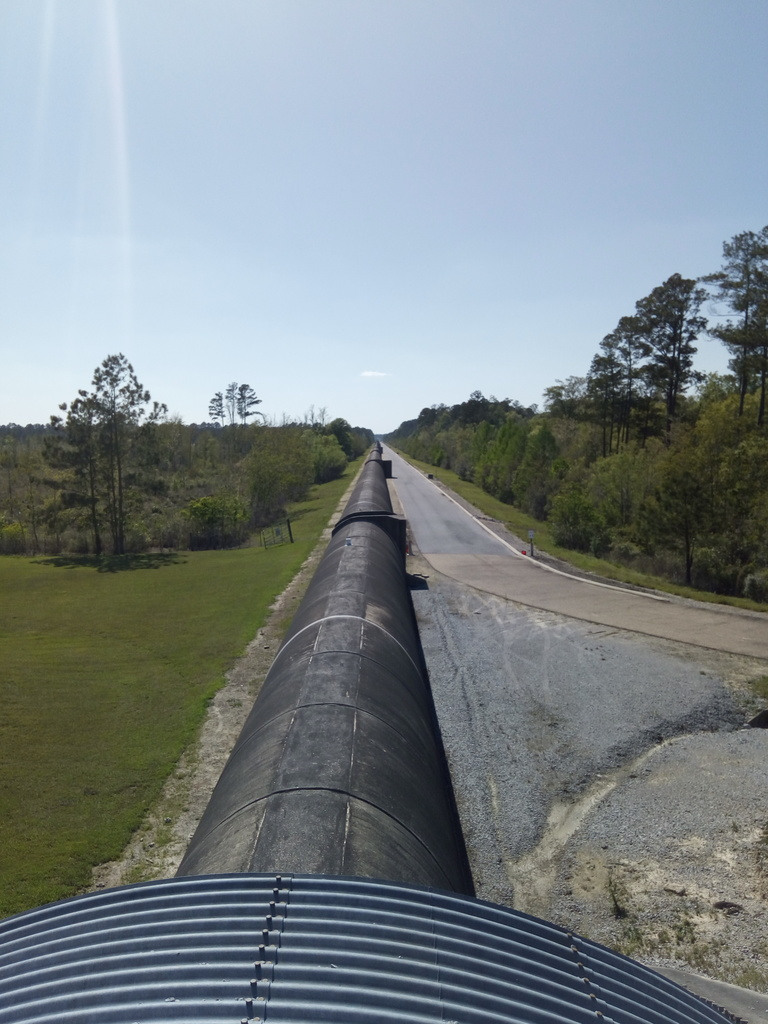 A long concrete tube stretches off into the distance through a pine forest.